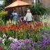 Romantic Garden 6