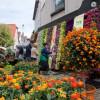 Gartenmesse Nagold 1