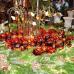 BoGart Weihnachtsmarkt 2016 1