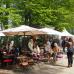 Ippenburger Frühlingsfestival 2016 8