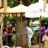 Friedewalder Gartenfest 6