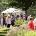 Friedewalder Gartenfest 3