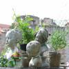 Friedewalder Gartenfest 5