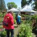 Lindauer Gartentage 4