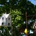 Lindauer Gartentage 5