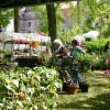 Das fränkische Gartenfest - Wasserschloss Mitwitz 5