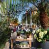 Neuwieder Gartenmarkt 4