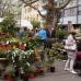 Neuwieder Gartenmarkt 1