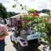 Ippenburger Sommerfestival 2016 6