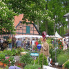 Beekenhof Gartenfestival 2017 4
