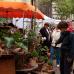 Blumen- und Gartenmarkt Herten  9
