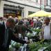 Blumen- und Gartenmarkt Herten  6