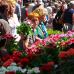 Blumen- und Gartenmarkt Herten  4