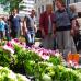 Blumen- und Gartenmarkt Herten  1