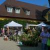 BoGart Schloss Bollschweil 2