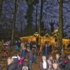 Waldweihnachtsmarkt in Velen 1