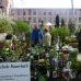 Gartenträume Alte Spinnerei 5
