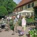 Eichenfürster Gartenmarkt  1
