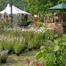 Eichenfürster Gartenmarkt  2