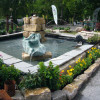 DiGA - Die Gartenmesse Tettnang 6