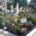DiGA - Die Gartenmesse Ulm-Wiblingen 8