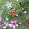 Kunst und Garten Böblingen 3
