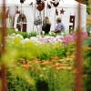 Hennebergisches Gartenfest Kloster Veßra 5