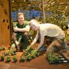 Inventa Garden 2016 3