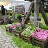 GartenLeben Freilichtmuseum Dorenburg 1