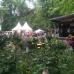Garten & Ambiente Nordenham 2