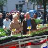 Blumen- und Gartenmarkt Essen Steele 2017 7