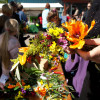 Gartenmarkt Späth'er Frühling 9