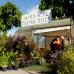 Gartenmarkt Späth'er Frühling 2