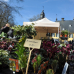 Findet Online statt - Stilblüte Schloss Lüntenbeck 4