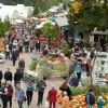 Traditionsfest mit grünem Markt 5