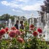 Thüringer Gartentage 8