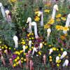 Kunst (im) Garten und Gesundheit Sindelfingen 1