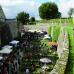 Rosen & Garten Messe Kronach 6