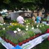 DiGA - Die Gartenmesse Iffezheim 1