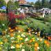15. DIGA Gartenmesse Kloster Wiblingen 1