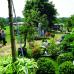3. Gartenfestival Wasserschloss Inzlingen 3