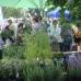 DiGA Bruchsal 2017 - Die Gartenmesse 2