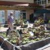 DiGA Iffezheim 2017 - Die Gartenmesse 7