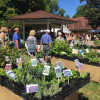 DiGA Iffezheim - Die Gartenmesse 1