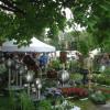 DiGA Tettnang 2017 - Die Gartenmesse 2