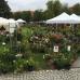 14. DiGA Gartenmesse Kloster Wiblingen 8