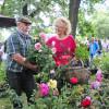Thüringer Gartentage 7