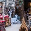 Weihnachtswelt Spezial -  Garten von Ehren 6