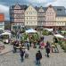 Pflanzenmarkt im Hessenpark 2
