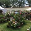 DiGA Beuggen 2017 - Die Gartenmesse 1